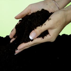 Чернозем,  грунт плодородный