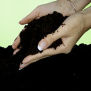 Чернозем,  грунт плодородный с доставкой по Гомелю