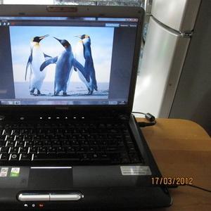 Продам ноутбук Toshiba A-300D-158, б/у 1, 5 года.