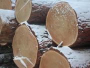 пиловочное бревно хвойных лиственных пород